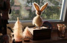 hasengold_weihnachtsmarkt_aachen_03